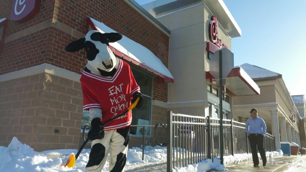 Chick-fil-A-Cow-Shoveling-Snow