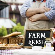 https://www.vantagep.com/wp-content/uploads/2019/07/Food-myths-feature-image.jpg